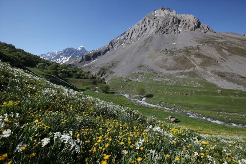 randonnée valloire, sortie nature valloire, balade valloire