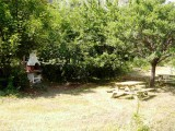 jardin-13283516